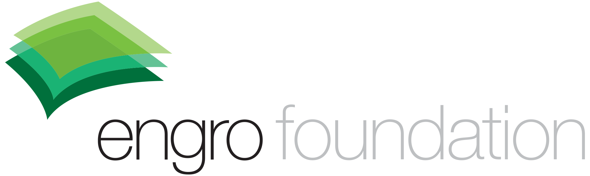 Engro Foundation Logo