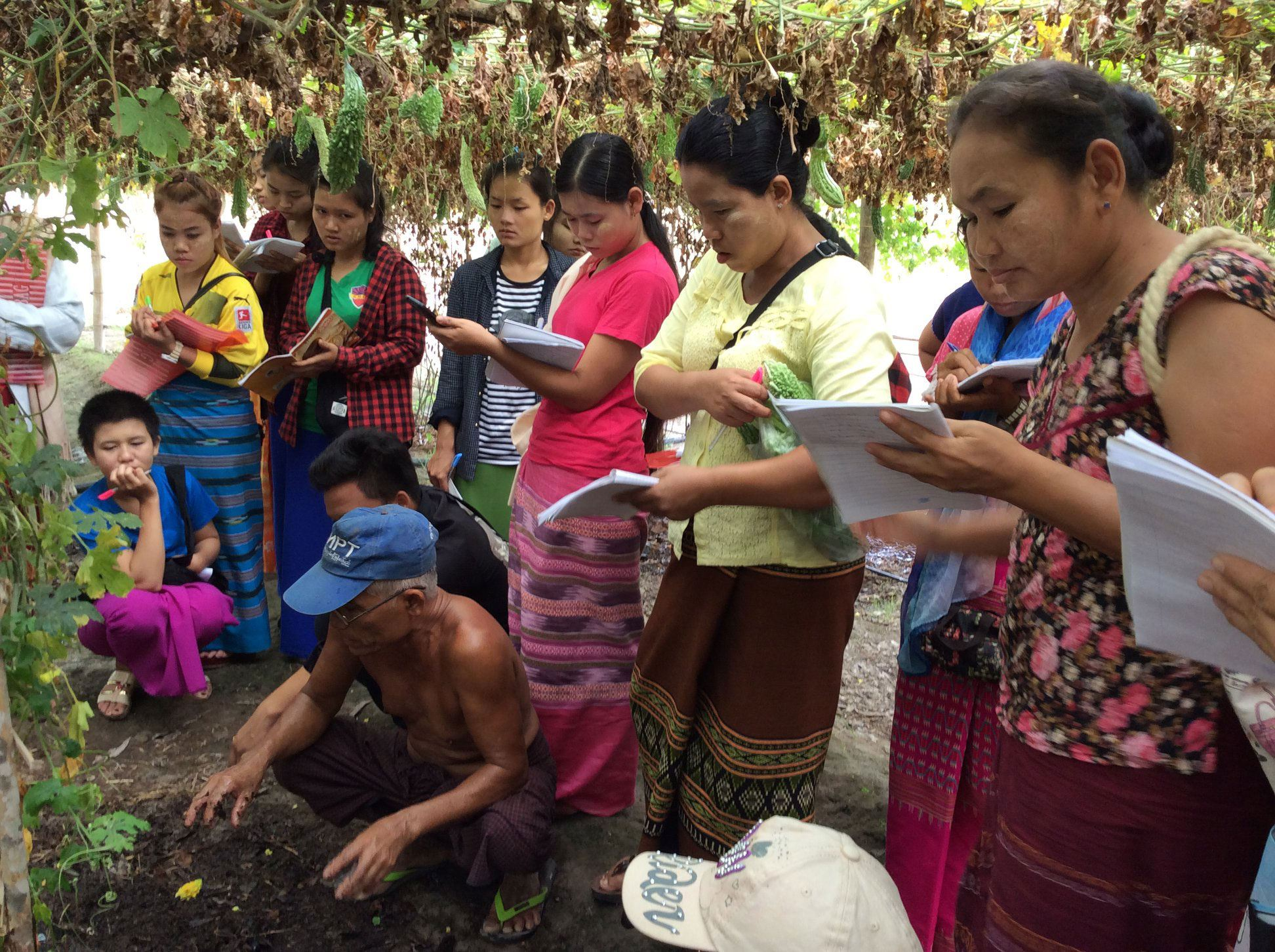 Creating new markets for seeds and vegetables in Kayin, Myanmar