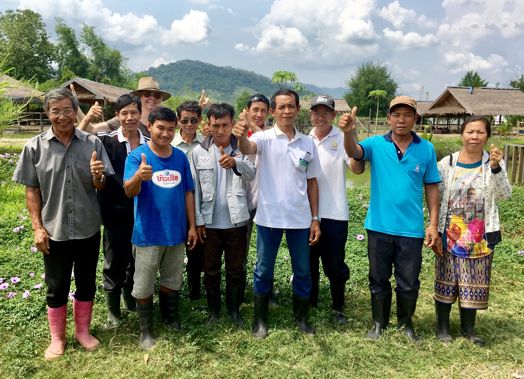 Healthy buffalo for healthier people in Laos