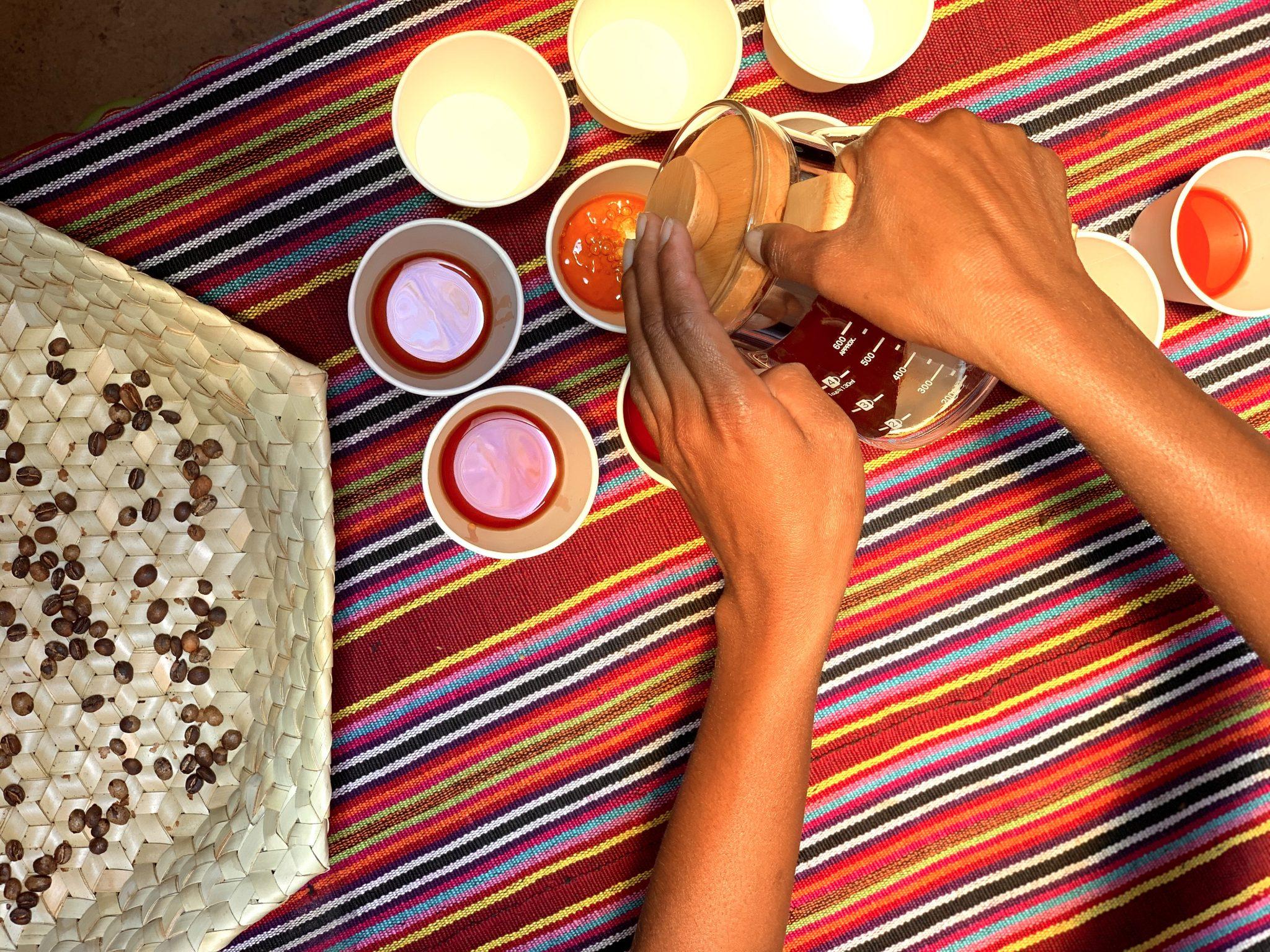 """""""Orijem Timor"""" Specialty Coffee in Timor-Leste"""